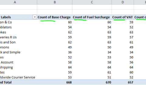 Excel automatically counts the items in the data field, rather than summing their values.